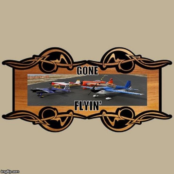gone flyin.jpg